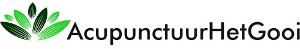 Acupunctuur Het Gooi